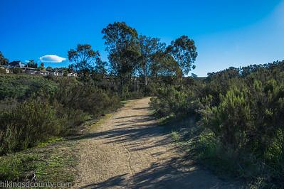20150124East Shephed Canyon_DSC0642-Edit