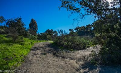20150124East Shephed Canyon_DSC0649-Edit