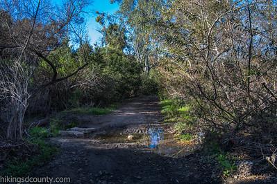 20150124East Shepherd Canyon_DSC0673-Edit