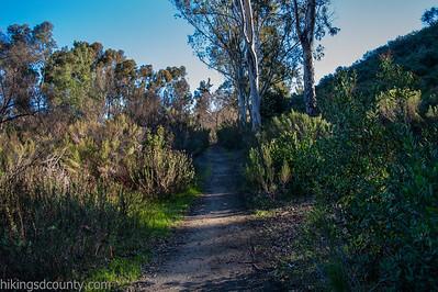 20150124East Shephed Canyon_DSC0632-Edit