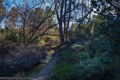 20150124East Shephed Canyon_DSC0633-Edit