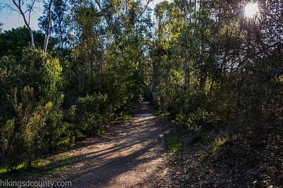 20150124East Shephed Canyon_DSC0656-Edit