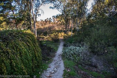 20150124East Shephed Canyon_DSC0630-Edit