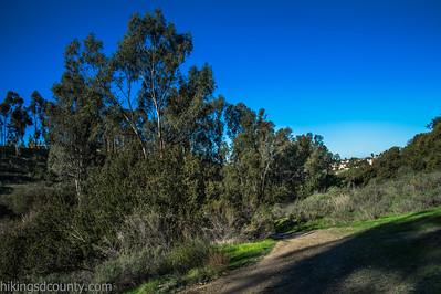 20150124East Shepherd Canyon_DSC0661-Edit