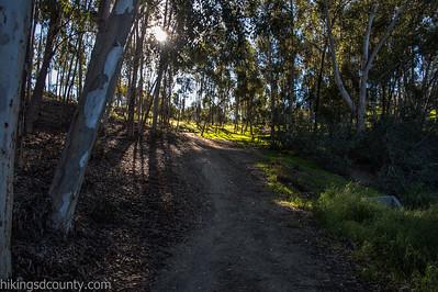 20150124East Shepherd Canyon_DSC0660-Edit