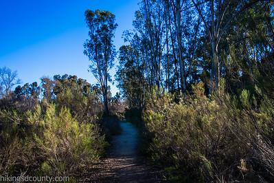 20150124East Shephed Canyon_DSC0631-Edit