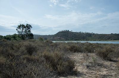20150628_DSC1635Batiquitos Lagoon