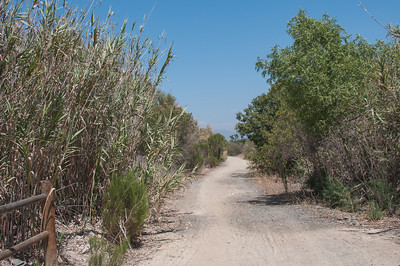 20140530Otay_Valley_Regional Park8183