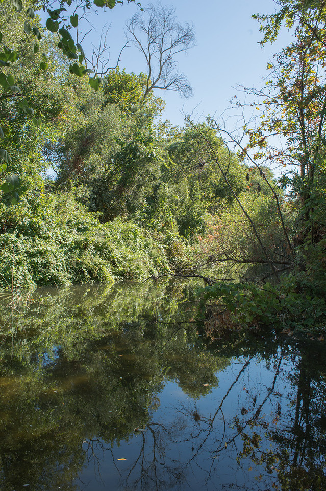 Santa Margarita River Trail-2152
