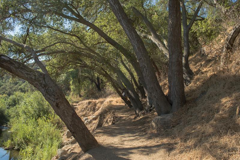 Santa Margarita River Trail-2145