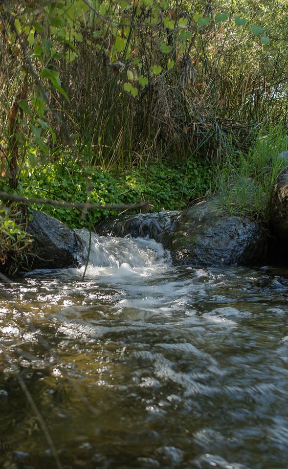 Santa Margarita River Trail-2162