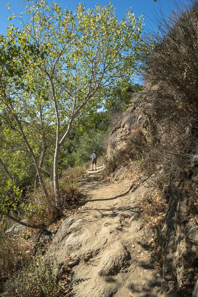 Santa Margarita River Trail-2134