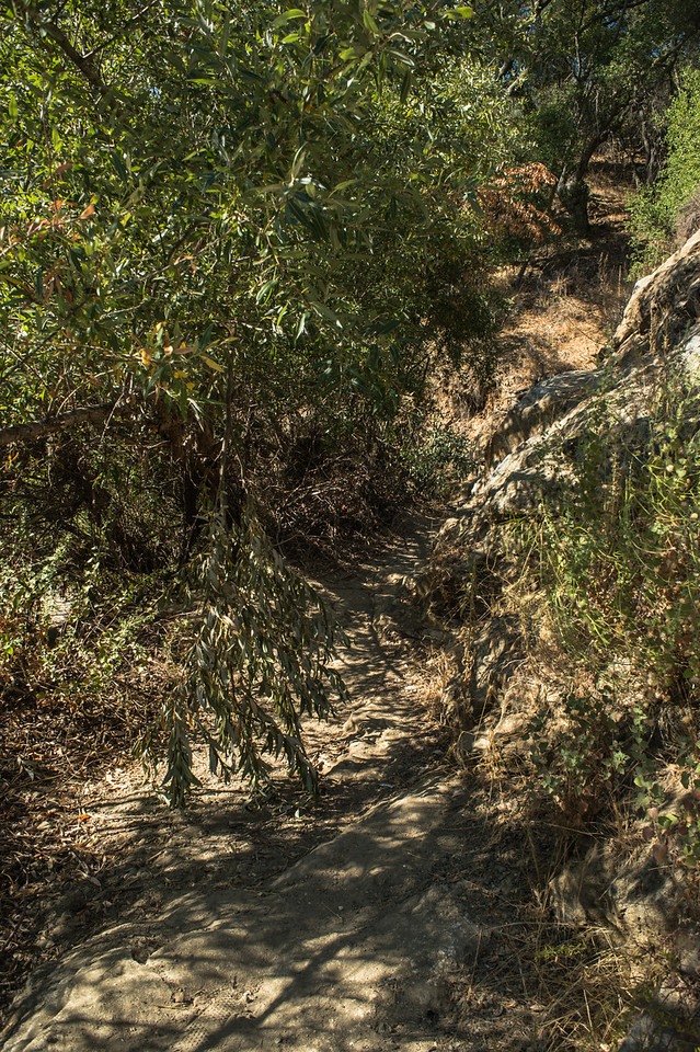 Santa Margarita River Trail-2137