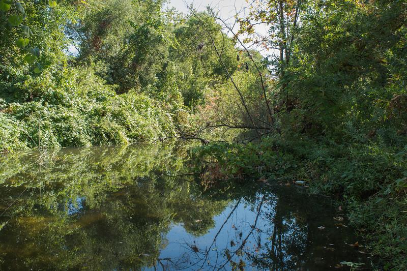 Santa Margarita River Trail-2150