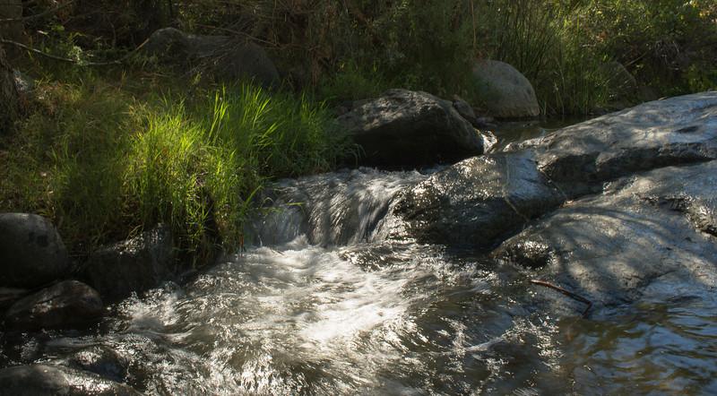 Santa Margarita River Trail-2156