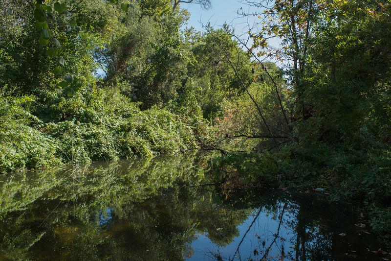 Santa Margarita River Trail-2151
