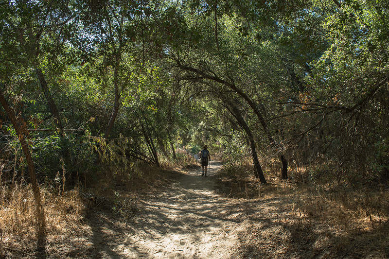 Santa Margarita River Trail-2131