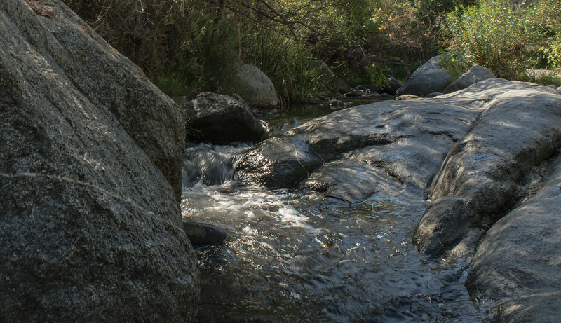 Santa Margarita River Trail-2154