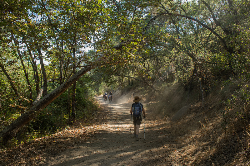 Santa Margarita River Trail-2148