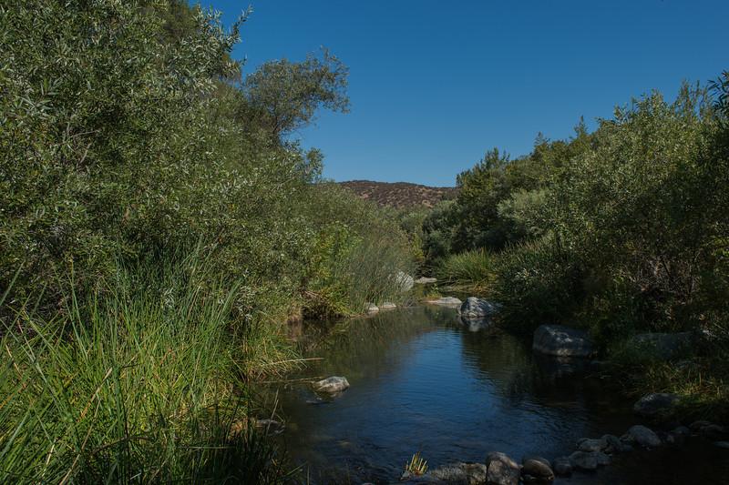 Santa Margarita River Trail-2153