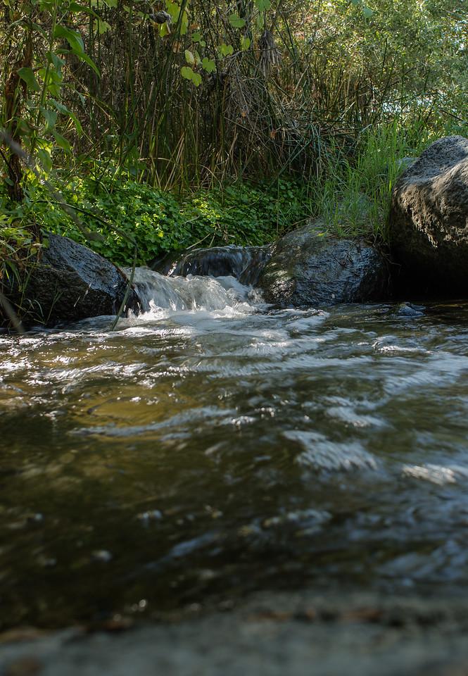 Santa Margarita River Trail-2161