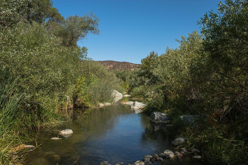 Santa Margarita River Trail-2166