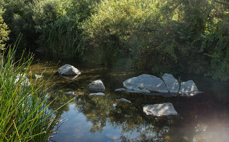 Santa Margarita River Trail-2136