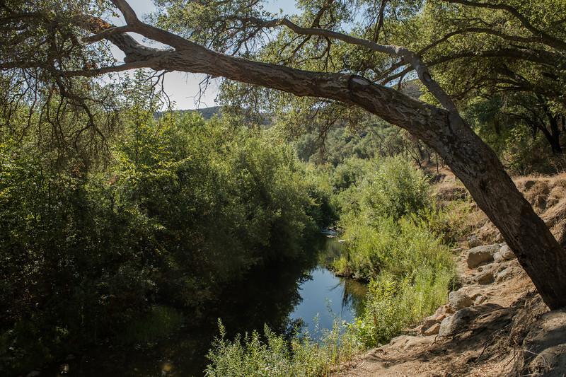 Santa Margarita River Trail-2144
