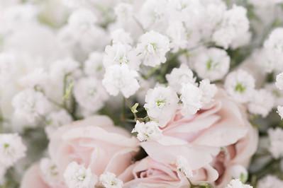 Sarah's Bridals ~ 4 27 2014-6