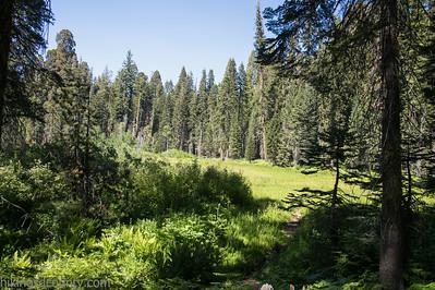 20140624Crescent Meadow1969
