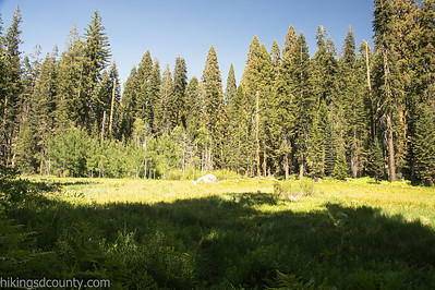 20140624Crescent Meadow1965