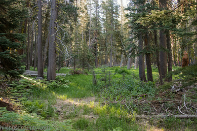 20140623Lakes Trail1027
