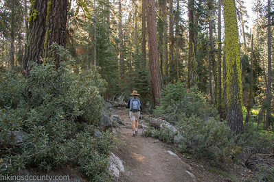20140623Lakes Trail1025