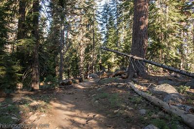 20140623Lakes Trail1016