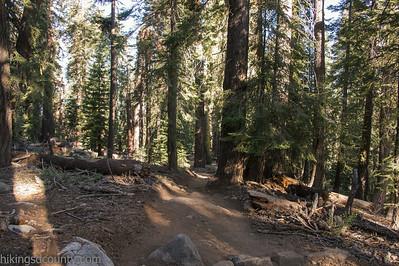 20140623Lakes Trail1022