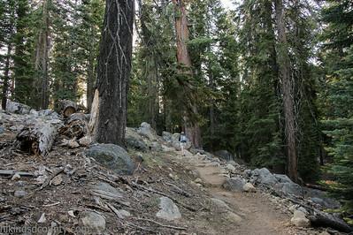 20140623Lakes Trail1009
