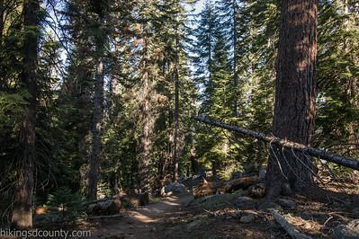 20140623Lakes Trail1017
