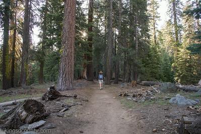 20140623Lakes Trail1003
