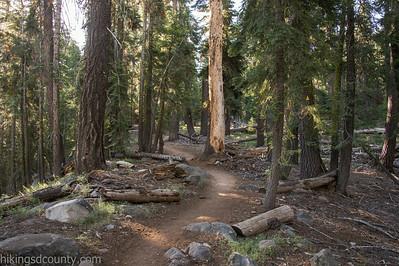 20140623Lakes Trail1021