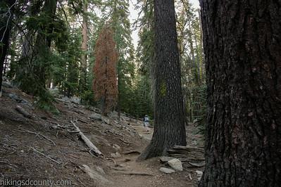 20140623Lakes Trail1008