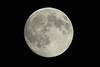 Moon-1736