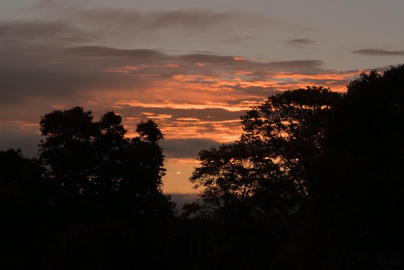 Sunrise at Miner's Marsh-1010367