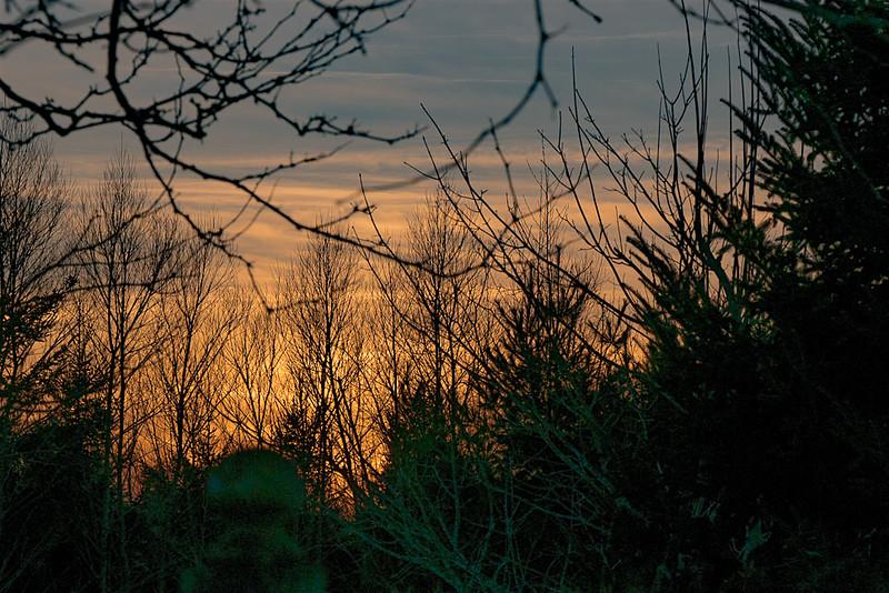 Sunset-1060012