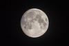 The moon digi-060021