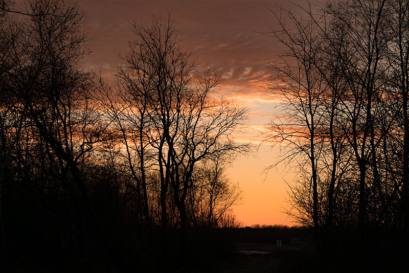 Sunset-1020504