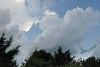 Thundery sky