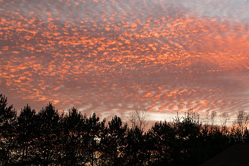 Sunset-1020507