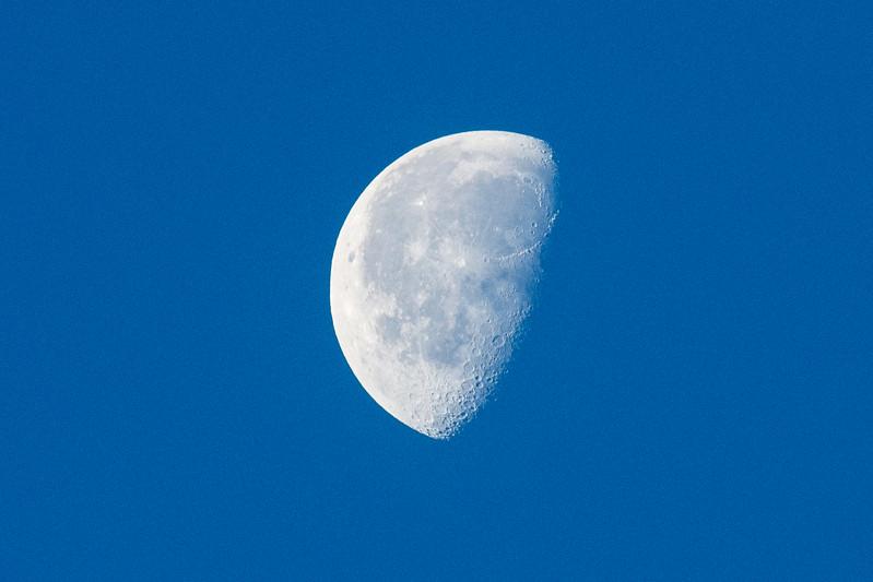 Half moon-0779