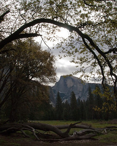 A Famous Ansel Adams Location - Yosemite National Park