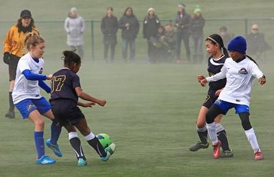 Soccer 2694c